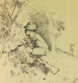 Rendhagyó szarvasvadászat (Nimród, 1978. szeptember)