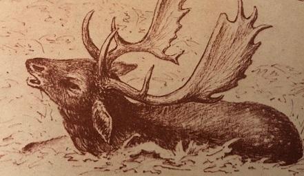 Október (Nimród, 1978. karácsonyi különszám)