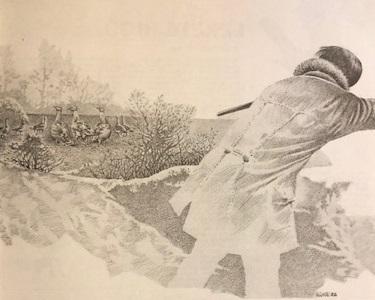 Túzok krónika (Nimród, 1983. február)