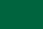 Vadaszújság.hu Logo