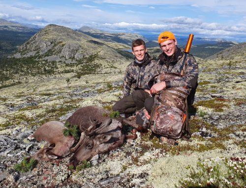 Rénszarvas vadászat a Reilmann testvérekkel: cserkelés Norvégiában