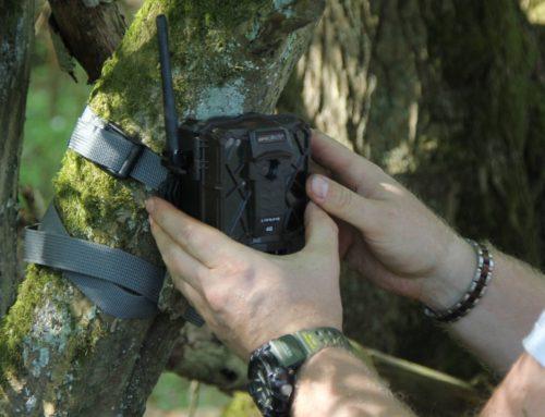 Felhasználói teszt: Spypoint Link-Evo − mit tud a vadkamera adatátvitellel?
