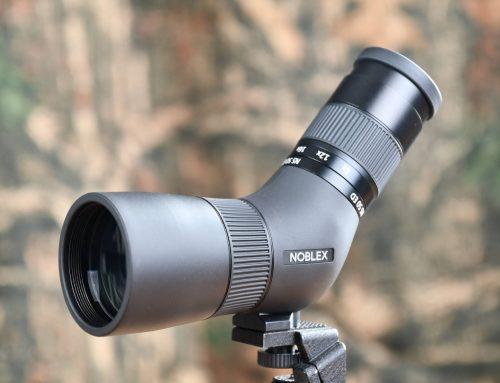 Teszt: NOBLEX NS 8-24×50 ED − mit tud a német optika specialista hihetetlenül könnyű mini spektíve?