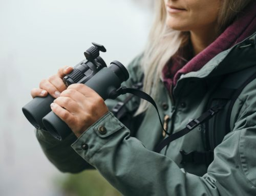 Távcső újdonság a Swarovski Optiktól: Az NL Pure új kialakítással és különösen széles látómezővel
