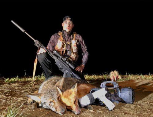 Tippek és trükkök egy profi ragadozó vadásztól a prérifarkasok és rókák éjszakai vadászatához